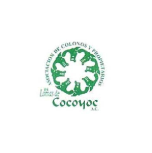 Asociación de colonos de Cocoyoc | Clientes de Mexican Consulting