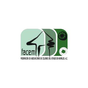 FACEM | Socios Comerciales Mexican Consulting