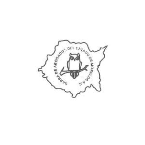 DELEGACION JOJUTLA | Socios COmerciales Mexican Consulting